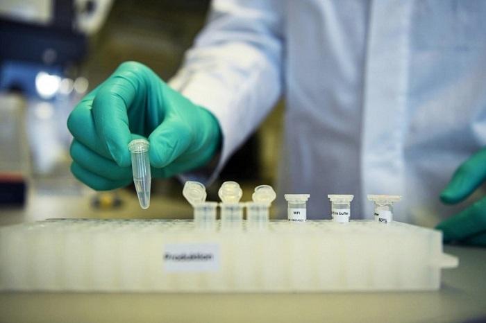 Тестирование вакцины
